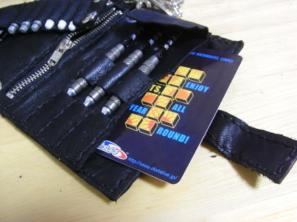 darts case