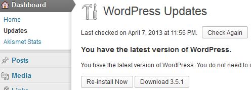 wordpress auto update