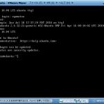 ubuntu10.04 on VMware
