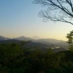 高尾山登ってきた。