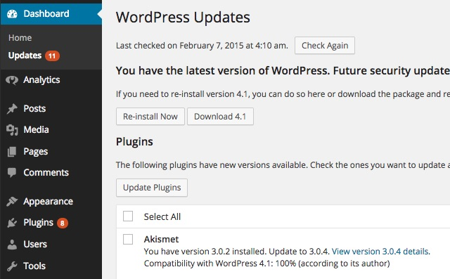 disable-all-wordpress-updates-before