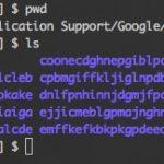 Google Chrome 拡張機能のソースコードを調べる
